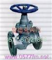 铸铁柱塞阀》贺德克阀门型号、结构、原理、标准、