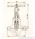 直通式平衡節流閥WSL8 6Y-PN(100-450)