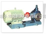 KCG、2CG高温齿轮泵,高温油泵,高温泵