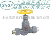 J21B(F)外螺紋氨用截止閥(帶接管)