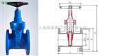 閘閥-Z45X型橡膠暗桿閘閥