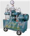 4D-SB电动试压泵,