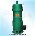 排污排沙潜水电泵