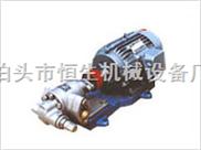 齿轮泵/KCB不锈钢齿轮泵/泊头市恒生机械设备