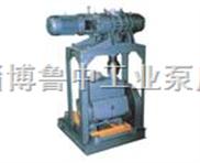 JZJX系列羅茨-旋片真空泵機組