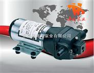 DP型微型隔膜泵,电动隔膜泵,塑料隔膜泵