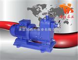 ZCQ型磁力自吸泵,磁力自吸泵,自吸式磁力泵,不锈钢自吸泵