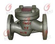 液化氣專用止回閥 燃氣專用止回閥 液化氣閥供應商