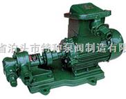 点火油泵/齿轮泵KCB300
