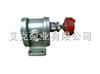 2CY-2.1/2.52CY-2.1/2.5高压不锈钢齿轮泵